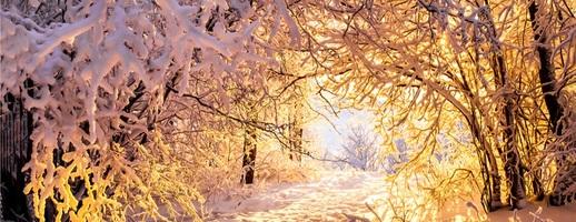 Photo small zima 2020 21 rozerwie nas na strzepy. snieg juz w listopadzie article